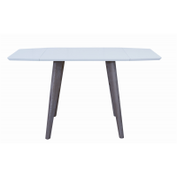 TABLE CARRY 139X79X75CM