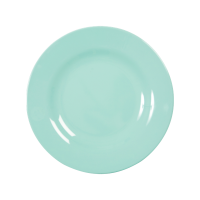 ASSIETTE MELAMINE DARK MINT